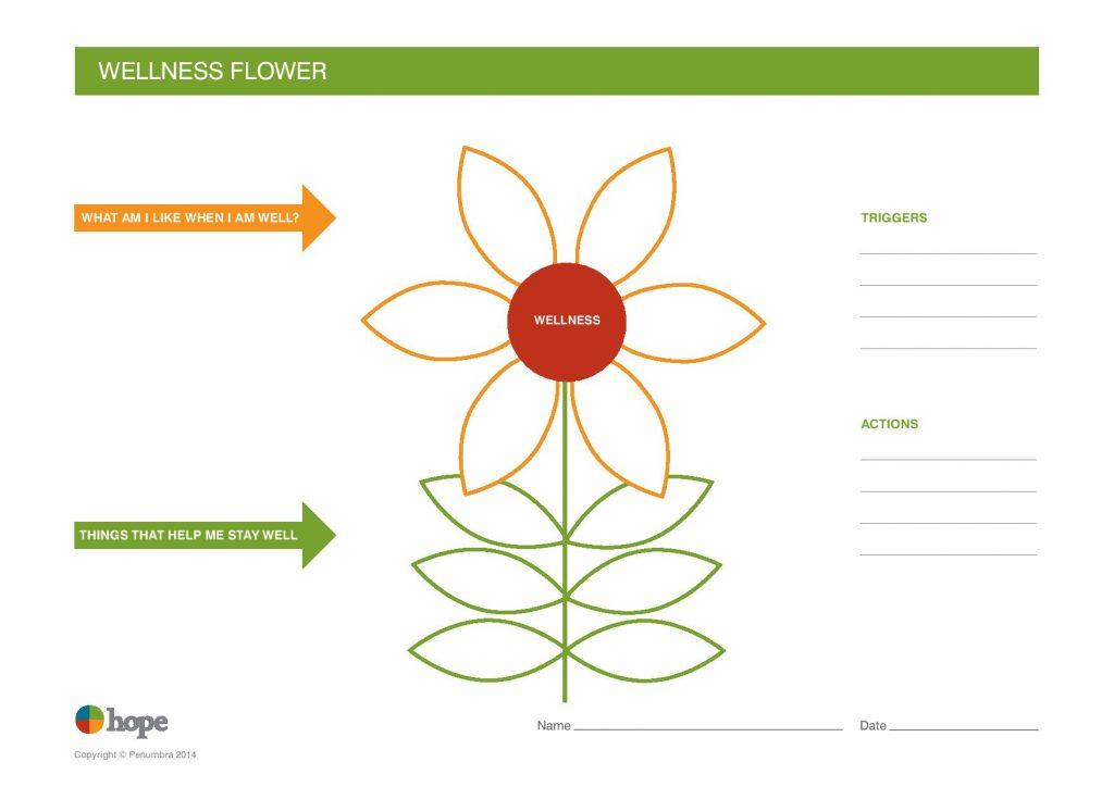 Wellness Flower from Penumbra